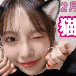 【画像あり】ぱるること島崎遥香さんの家で飼ってる猫wwwwwwww