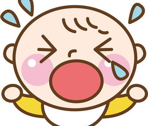 【画像あり】親「赤ちゃんの泣き声が五月蠅い言われても困る。そもそも赤ん坊は泣くのが仕事だ」←確かに…
