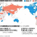 【悲報】日本国さん、国連で中国と一緒に大麻解禁に反対してしまう