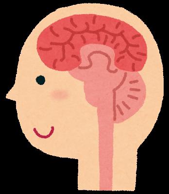「人間の脳は、3000円より2990円の方が安いと勘違いする」