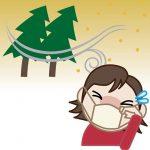 なんで国はスギの木を切り倒さないんだ?花粉症つらすぎるわwwwwwwww