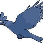 【画像あり】カラス「おっ、鷲やん!!!!!!!!」